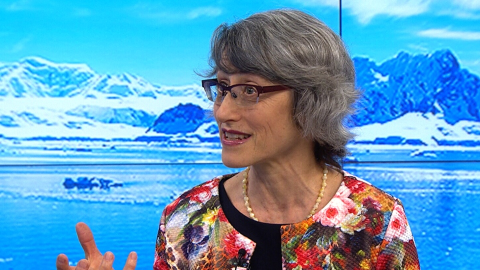 Miriam Diamond, a professor of Earth sciences at the University of Toronto, speaks about icebergs on CTV's Your Morning Monday, June 12, 2017.