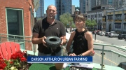 CTV Ottawa: Urban farming with Carson Arthur