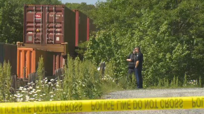 Halifax Regional Police are investigating a fatal train collision in Bedford, N.S.