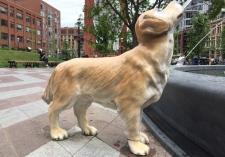 Berczy Park dog statue