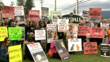 Lillydale protest