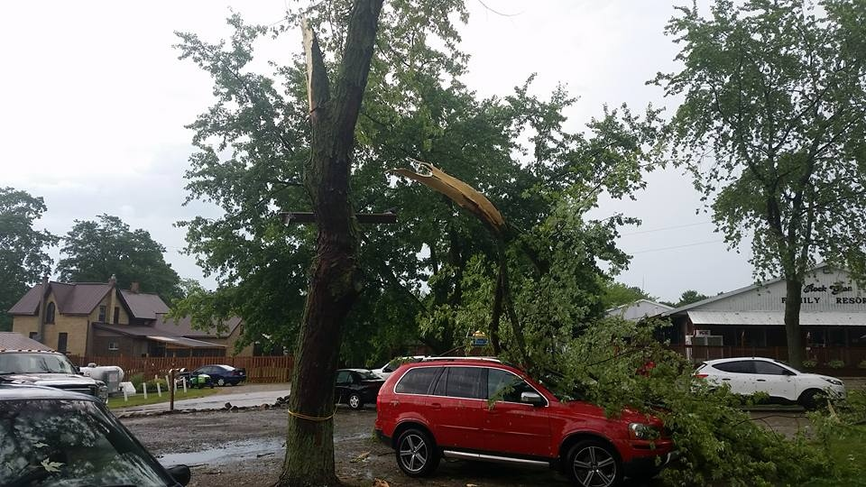 Numerous trees and property damaged after a severe storm ripped through Arkona, Ont. on Saturday, June 17, 2018.