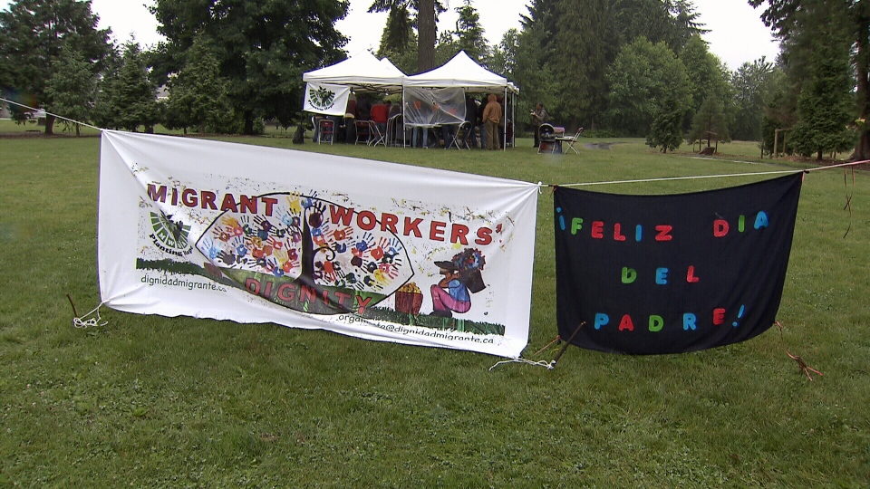Migrant farm workers gathered at a Father's Day event organized by Migrant Workers' Dignity Association in Surrey Sunday. (CTV)
