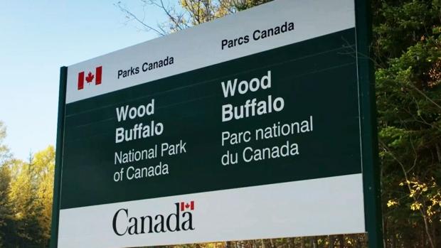 Wood Buffalo World Heritage Site