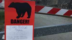 A sign warns people that the trail head is closed on Monday, June 19, 2017, after a fatal bear mauling at Bird Ridge Trail in Anchorage, Alaska. (AP Photo/Mark Thiessen)