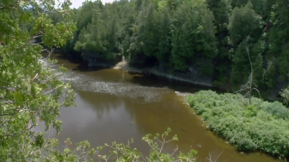 The Elora Gorge is pictured on Tuesday, June 20, 2017.