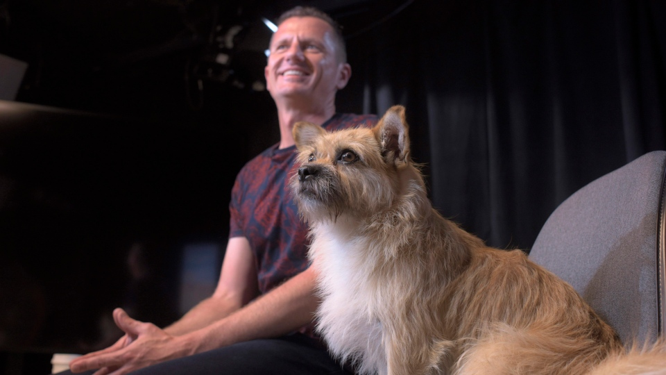 In this Wednesday, June 14, 2017 photo, Dion Leonard and his dog, Gobi, prepare for an interview in New York. (AP / Patrick Sison)