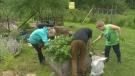Family Matters- Garden App