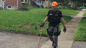 A Barrie, Ont. police officer searches an area north of the downtown for missing woman Carolyn Pringle on Thursday, June 22, 2017. (Mike Walker/ CTV Barrie)