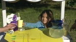 stollery-lemonade