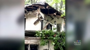 Massive tree falls on house in The Beach