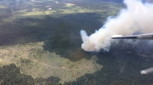 Wildfire breaks out near 100 Mile House (BC Wildfire Service)
