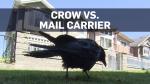 Crow keeps Canada Post from B.C. neighbourhood