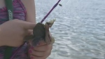 CTV Barrie: Fishing Day