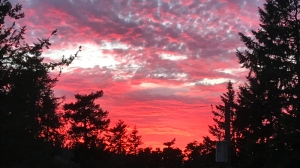 Sunday night's sunset, as viewed from Saanich at 9:32 p.m. (Astrid Braunschmidt/CTV Vancouver Island)