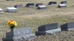Province backtracks on funeral coverage cut
