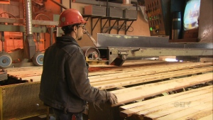 CTV National News: Softwood lumber duties