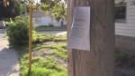 A fake notice regarding a public meeting in the Blackfriars neighbourhood is seen on Monday, June 26, 2017. (Daryl Newcombe / CTV London)