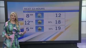 CTV Morning Live Weather June 27