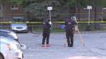 Officials say they found a 3-year-old boy with a head injury on Grey Street in Brantford.