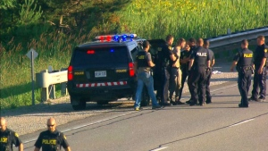 One male was taken into custody following a police pursuit north of Toronto on June 28, 2017.