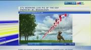 Weather Update June 28