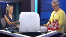CTV News Channel: Tasting an iceberg