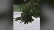 CTV Ottawa: Hail storm hits the capital