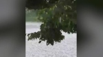 CTV Ottawa: Hail storm hits the capital