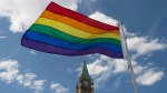 The pride flag flies following a raising ceremony on Parliament Hill Wednesday June 1, 2016 in Ottawa. (THE CANADIAN PRESS / Adrian Wyld)