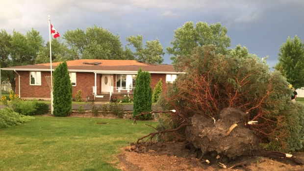 Powerful storm rips through southwestern ontario ctv for Landscaping rocks windsor ontario