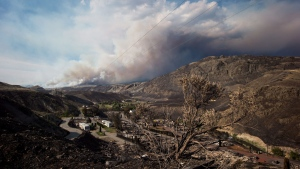 A burnt tree is seen in the foreground above the remains of mobile homes destroyed by wildfire in Boston Flats as a fire burns on a mountain near Ashcroft, B.C., on Sunday, July 9, 2017. B.C. government officials now estimate that 7,000 people have been evacuated from their homes due to wildfires burning in the province. (Darryl Dyck / THE CANADIAN PRESS)