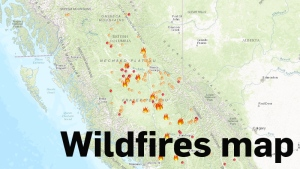 Wildfires map