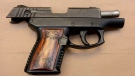 A loaded 9mm Taurus handgun was seized by Toronto police during an investigation on Willowridge. (Toronto police handout)