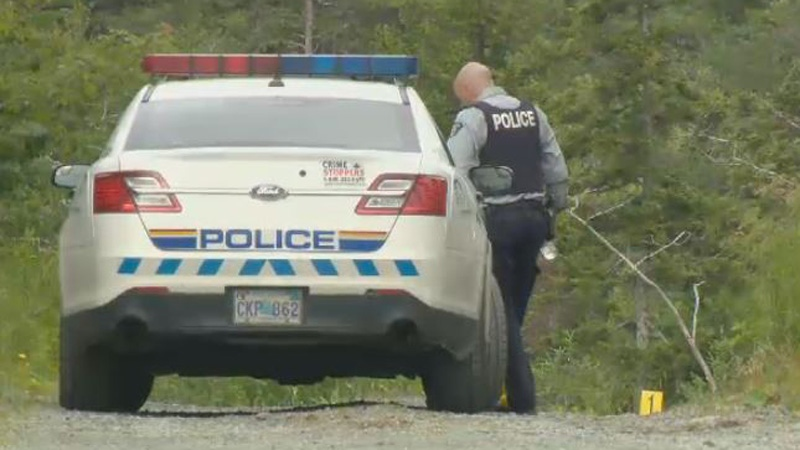 Police are investigating a violent home invasion in Porters Lake, N.S.