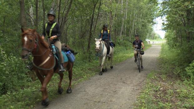 horse, tour, canada