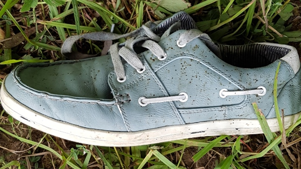 Waterloo Regional Police have released a photograph of this shoe belonging to an unidentified person whose remains were found on a farm in North Dumfries. They want to hear from anyone who recognizes the shoe.