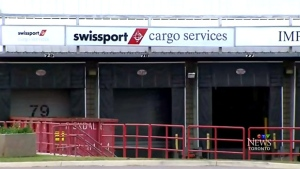 About 700 cabin cleaners, baggage handlers and other ground crew workers employed by Swissport at Pearson have been on strike since late July.