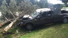 Snyder's Road crash