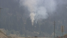 Williams Lake wildfire