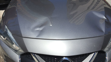Dents are visible on the hood of a car involved in a collision with a cyclist that was caught on dash cam. The cyclist has been charged with failing to stop at a red light under the Highway Traffic Act.