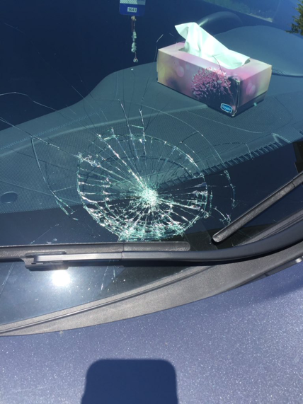 A car's windshield is badly damaged after a collision with a cyclist that was caught on dash cam. The cyclist has been charged with failing to stop at a red light under the Highway Traffic Act.