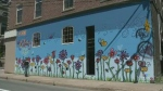 Artists in New Glasgow, N.S., are brightening up their community by painting murals over bare buildings.