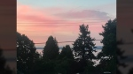 Pink sky at sunset in Saanich. July 17, 2017. (Astrid Braunschmidt/CTV Vancouver Island)
