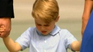 The case would affect Prince George's children