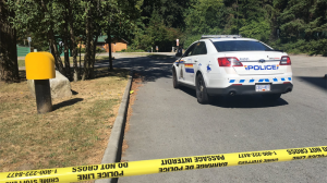 Investigators were called in after a suspicious death at Central Park in Burnaby, B.C. on July 19, 2017. (Maria Weisgarber, CTV Vancouver)