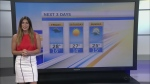 CTV Morning Live Weather July 20