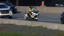 sq, motorcycle