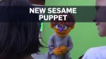 Sesame Puppet