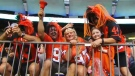 BC Lions' ticket sales dip: Where are the fans?